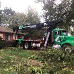 Bloomfield tornado Tree removals