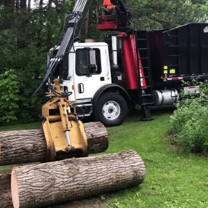 Land clearing and brush removal service