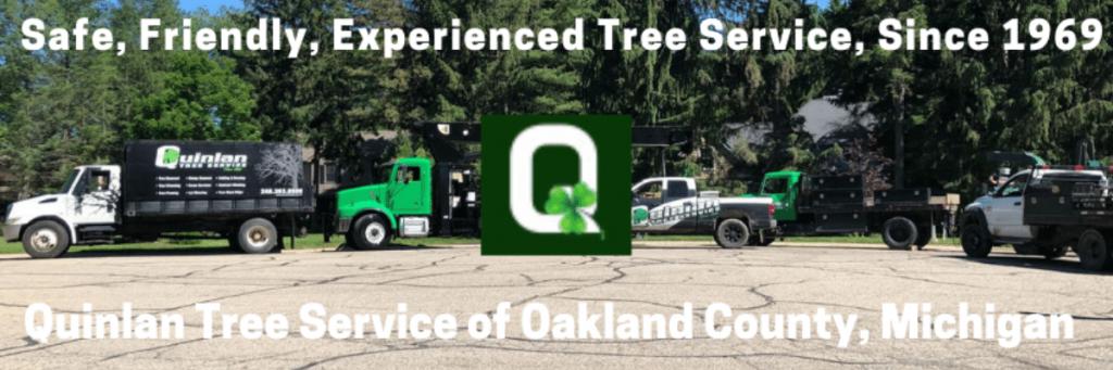 Tree service in Oakland County Michigan